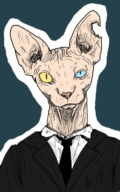 Mr. Spynx
