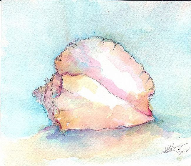 watercolor+paintings+of+sea+life | Seashell pink - by G.J. King from Seashells
