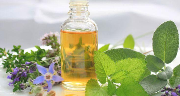 Aceite de orégano  Probablemente el mejor aceite de la medicina alternativa #salud