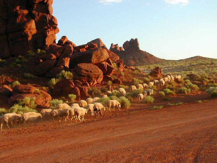 Monument Valley, tarkemmin sanottunaMonument Valley Navajo Tribal Park. Senkuiva autiomaa on täynnä karua historiaa. Eroosio on muovannut luontoon suuria kivipaaseja, jotka nykyään näkyvät monien…