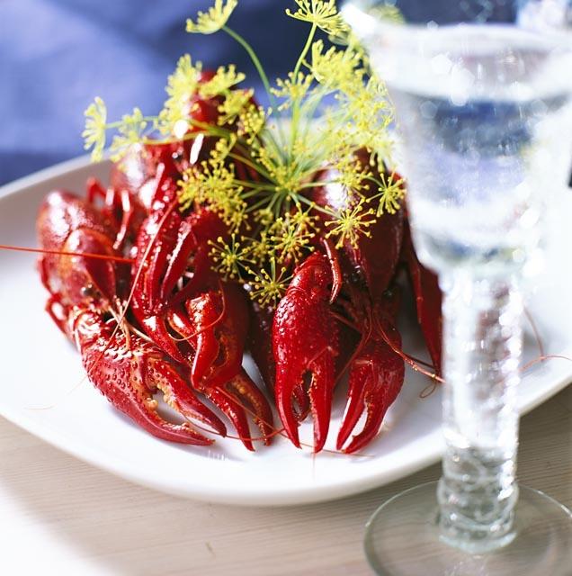Kräftskiva (crawfish party) cing up in August.