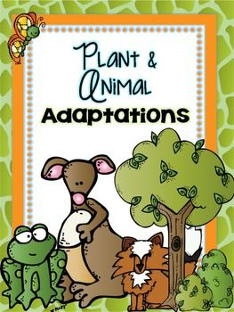 Your students will have so much fun with this adaptations unit! There is a wide variety of graphic organizers and fun activities that will get your students excited about science. Inside you'll find: vocabulary posters, activities, graphic organizers,  and more! $