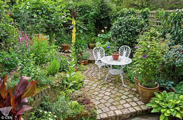 The ultimate small garden makeover guide  | Daily Mail Online