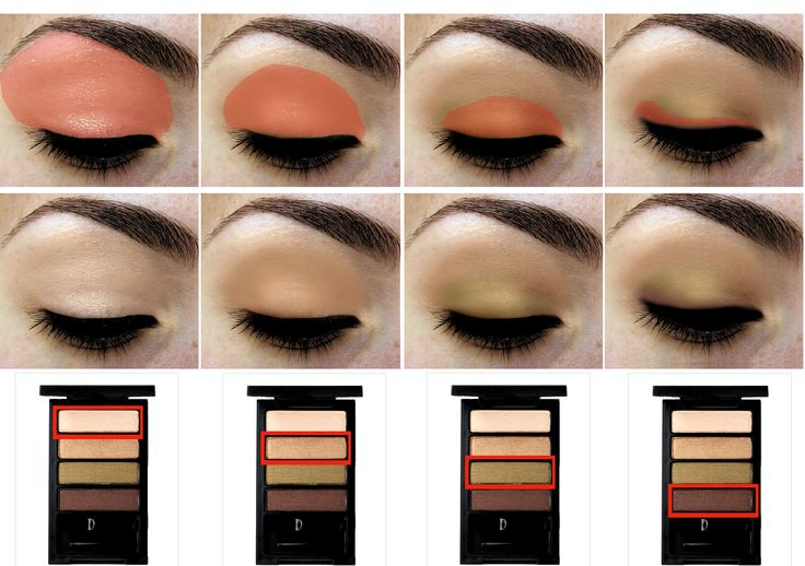subtle and sultry where and how to apply eyeshadow