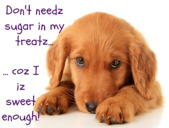 Good ingredients for making diabetic dog treats and some example recipes.