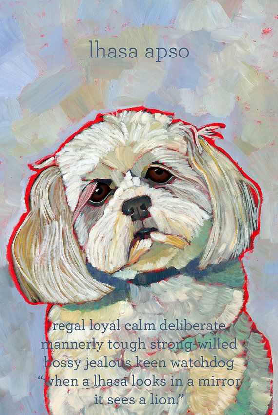 Lhasa Apso No. 2 magnets coasters and art prints by ursuladodge