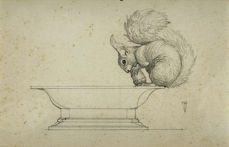 Animalarium - fantastic drawing of a squirrel.