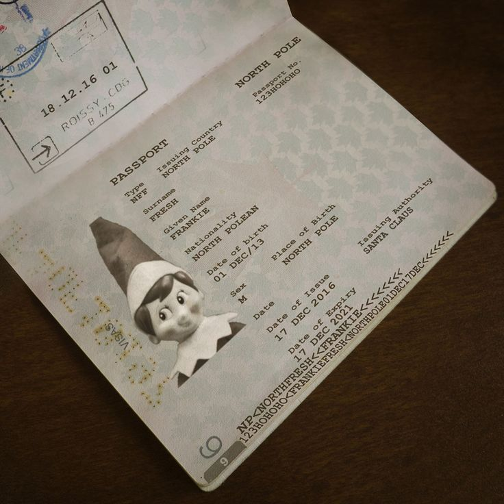 New Passport has arrived! Frankie is off to Ohio to check out our fresh new TOV. #ElfOnTheShelf #Traveller #Ohio