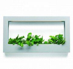 """Jardinière """"TV"""", Teracrea chez Sabz - Objets déco à double fonction - Pour les amateurs de plantes vertes, cette jardinière """"TV"""" est idéale pour faire entrer la nature dans la maison. A poser ou à accrocher à un mur. Jardinière """"TV"""" en polyéthylène..."""