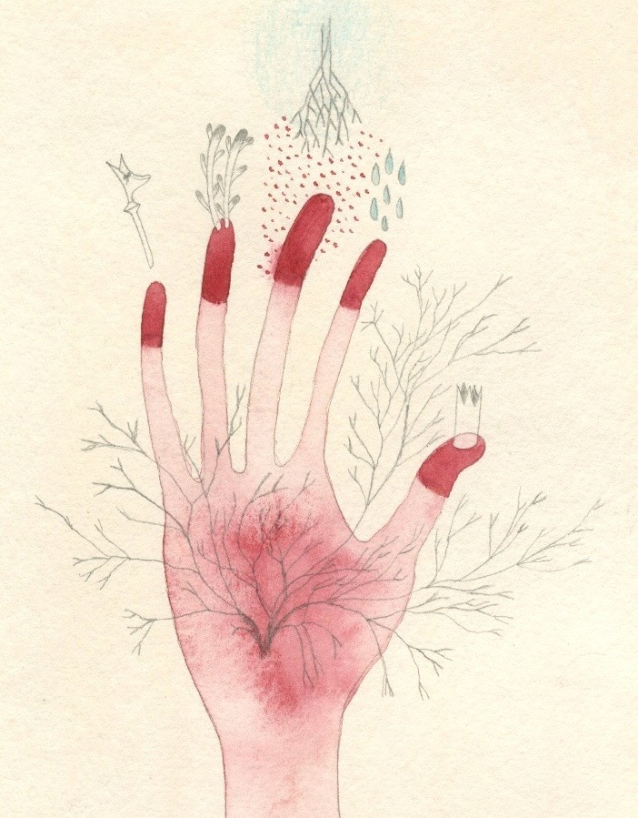 cendrine rovini - graphite pencil + coloured pencil + watercolour - les semis  #hand