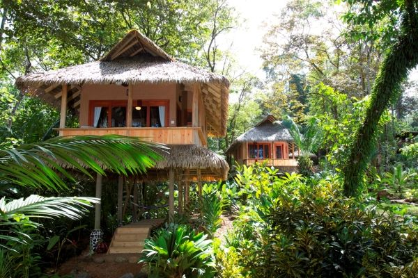 Copa de Arbol Beach and Rainforest Resort is a luxury eco lodge set on the wild and remote Osa Peninsula in Costa Rica near Drake Bay.