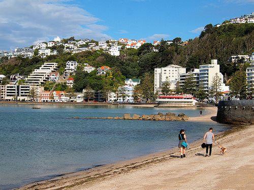 Oriental Bay in Wellington, NZ