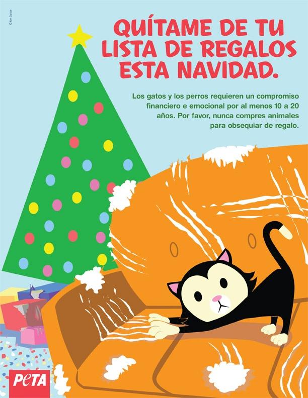 Las mascotas son compromisos financieros y emocionales por más de 10 años. Por favor, no las usemos como regalo estas Navidades.