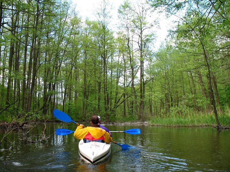 Szlak rzeki Dajna.  www.it.mragowo.pl