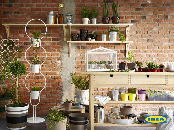 IKEA Česká republika Tato stránka se mi už líbí · 4 hod ·    Stačí jen pár květináčů a vaše jídlo může vonět po čerstvých bylinkách. Tipy na domácí pěstování i zdravé recepty najdete na http://skolavareni.ikea-family.cz/