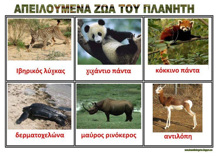 dreamskindergarten Το νηπιαγωγείο που ονειρεύομαι !: Λίστες αναφοράς για τα ζώα στο νηπιαγωγείο