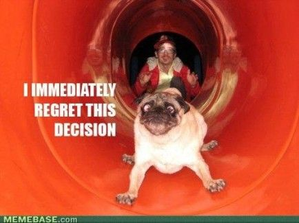 I have an unhealthy obsession with pug memes!