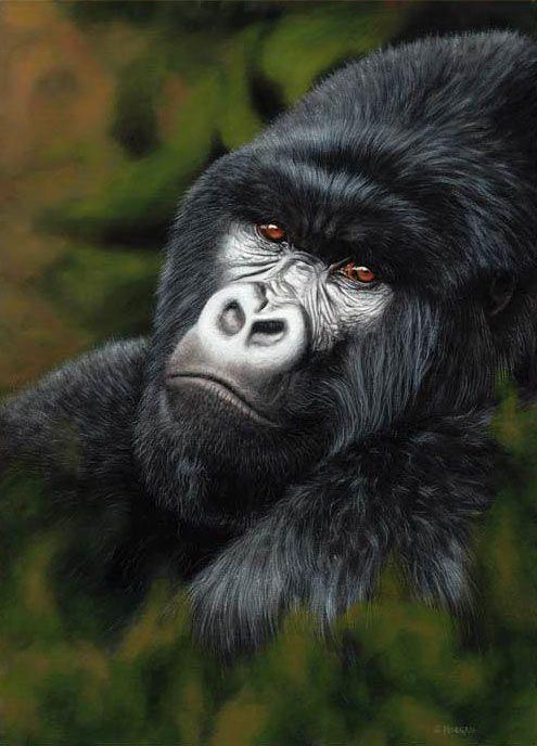 mountain gorilla, free art tutorial lesson    ...BTW,Please Check this out:  http://artcaffeine.imobileappsys.com