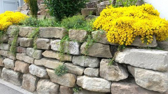 Trockenmauer Bauen Anleitung Steinmauer Garten Trockenmauer Bauen Trockenmauer