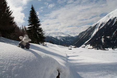 Winterwanderweg Davos