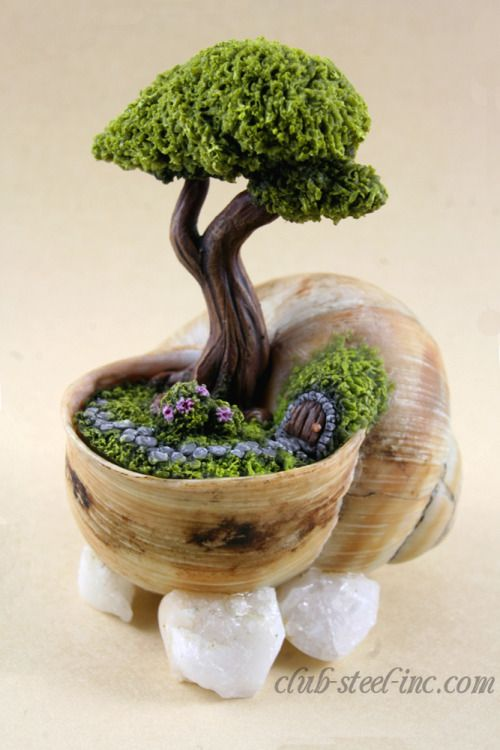 25+ Best Ideas About Schneckenhaus On Pinterest | Beton Diy, Diy ... Bonsai Baum Dekoidee Indoor Garten