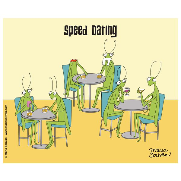 Speed dating for over 45