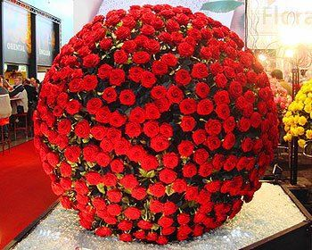 1000 Roses?