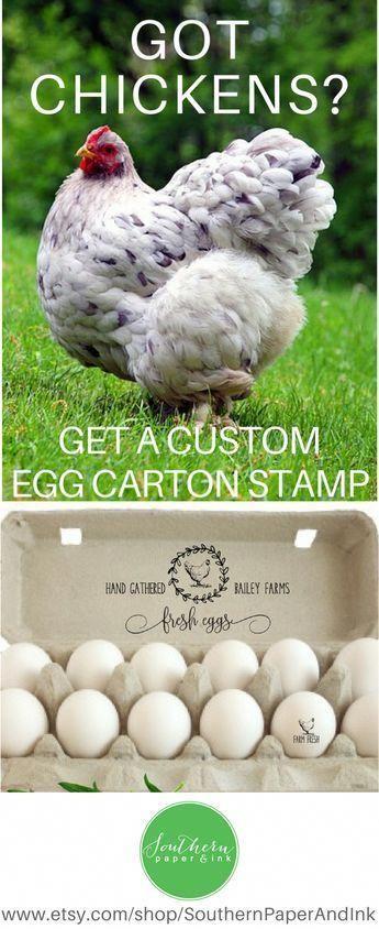 Personalisierte Eierkartons Stempel, benutzerdefinierte Bauernhof Stempel, Huhn Ei Karton Label, frische Eier Huhn Geschenk, Hen Farm Namensschild, Hühnerstall Dekor