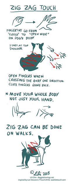 Boogie TTOUCH notes: ZIG ZAG Touch by lili.chin, via Flickr