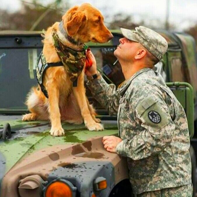 If this photo doesn't say man's best friend, I don't know what does. Thank you to all our brave military working dogs.  http://loveahero.org #LoveAHero #marines #military #neverforget #navy #veterans #heroes #deployed #dogs #supportourmilitary #soldier #army #airforce #America #picoftheday #troops #thankyou