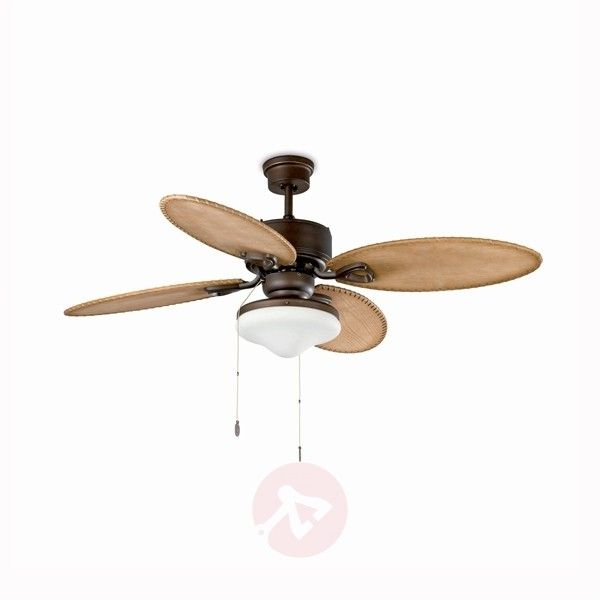 The LOMBOK ceiling fan has 4 wonderful, oval fan blades in light wood, edged on all sides, making the fan into a decorative piece on the ceiling.