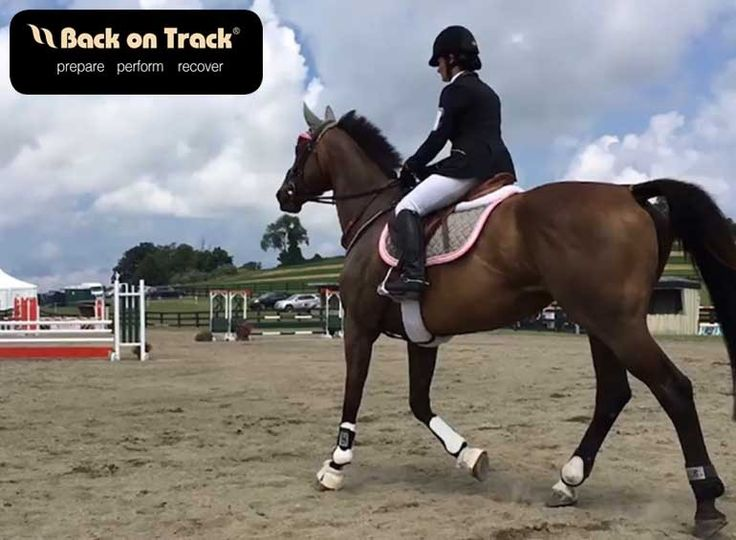 Self-confidence and a cool head are a huge part of being successful in equestrian sports... Adult amateur eventer extraordinaire, Lynn Travers shares how she battles her nerves #SolidAdvice