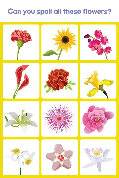 With Kids Spell and Learn Flowers, Kids love to spend hours listening and practicing spellings. Visit us at apps.eddypaddy.com