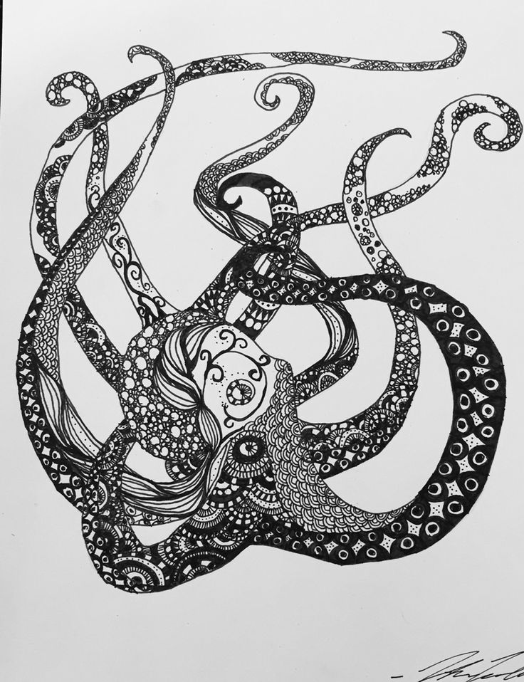 Doodled octopus