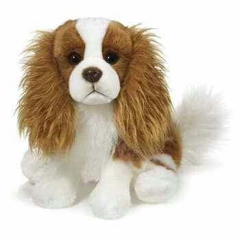 Boy Dog Names For Cavalier King Charles Spaniels