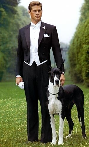 """White tie, of course"" by Janny Dangerous. Dapper, but I don't like the Dane's ears cut."