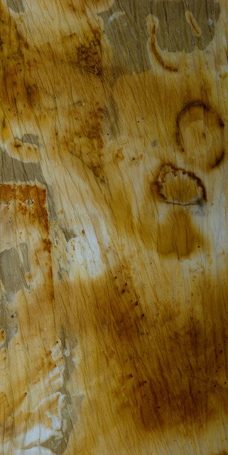 1000 images about rust natural dyeing textiles on for The art and craft of natural dyeing