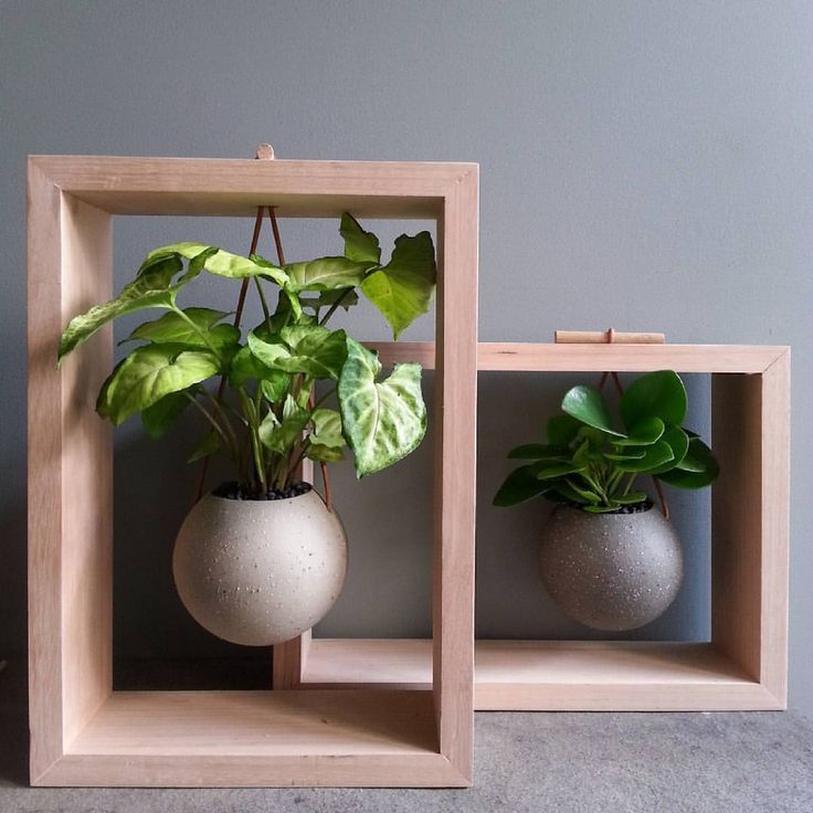 Love this idea for decorative display of houseplants.