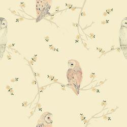 Owl Pastel Bg Cute Vintage Backgrounds Tumblr