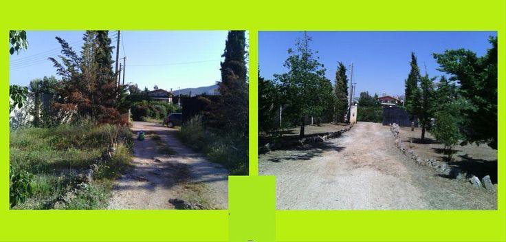 Γνωρίστε την δουλεία μας (Photo) - www.hortokoptiki.gr κοπη χορτων, καθαρισμός χώρων, grass cleaner, χορτοκοπτική, αποψίλωση, οικοπέδων