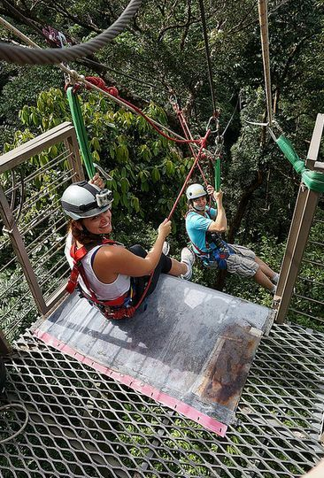 Prepping to launch myself off a platform perched high in the Daintree Rainforest