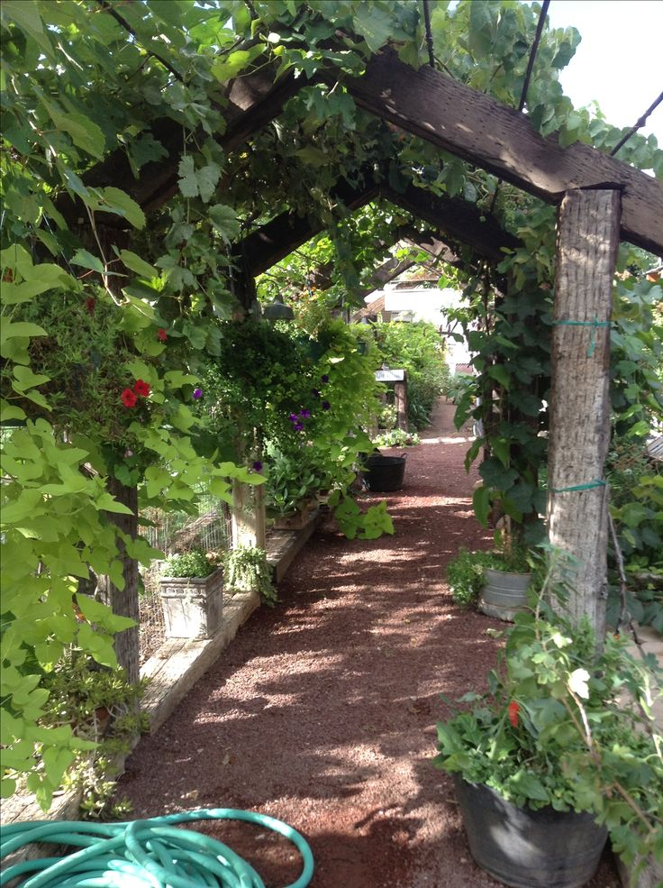 Railroad ties turned into a arbor with grape vines and hanging baskets