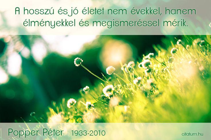Popper Péter idézete az életről.