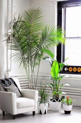 50 Ιδέες για ξεχωριστές γλάστρες! | Φτιάξτο μόνος σου - Κατασκευές DIY - Do it yourself