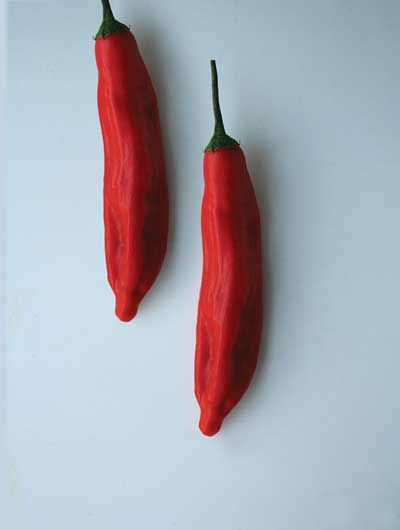 Chile Pepper Guide - Photo Gallery | SAVEUR