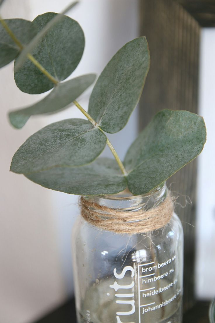 Tischdekoration Gartenparty Eucalyptus Deko | Deko_inspiration | Home Decor, Decor Und