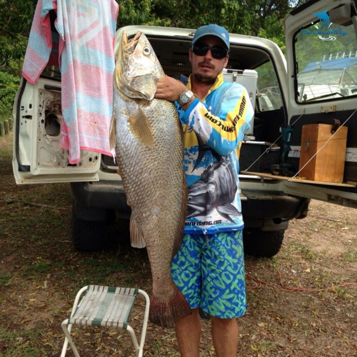 Catch of the Week? Black Jewfish caught by Kyle.  #Fishing with Catchability