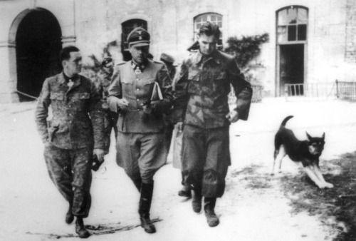 Kurt Meyer, Fritz Witt & Max Wünsche