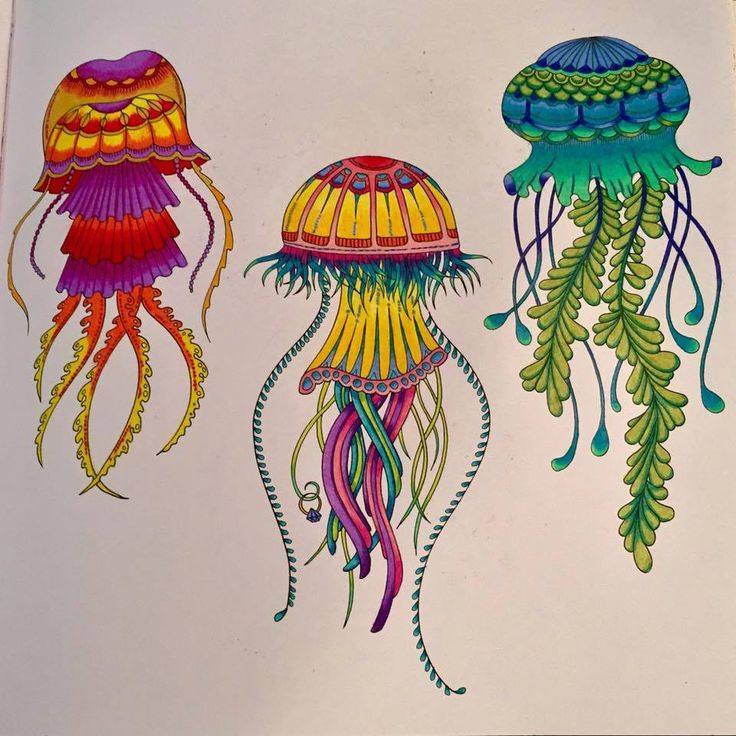 Jellyfish Inspirational Coloring Pages