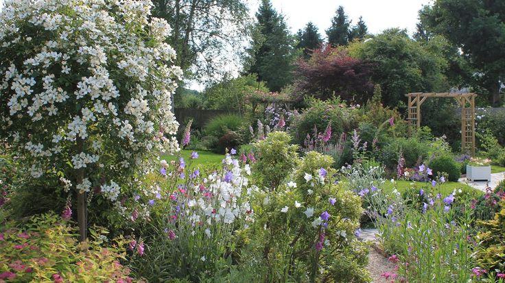 des plantes floraison longue pour un jardin fleuri toute l 39 ann e plantations. Black Bedroom Furniture Sets. Home Design Ideas
